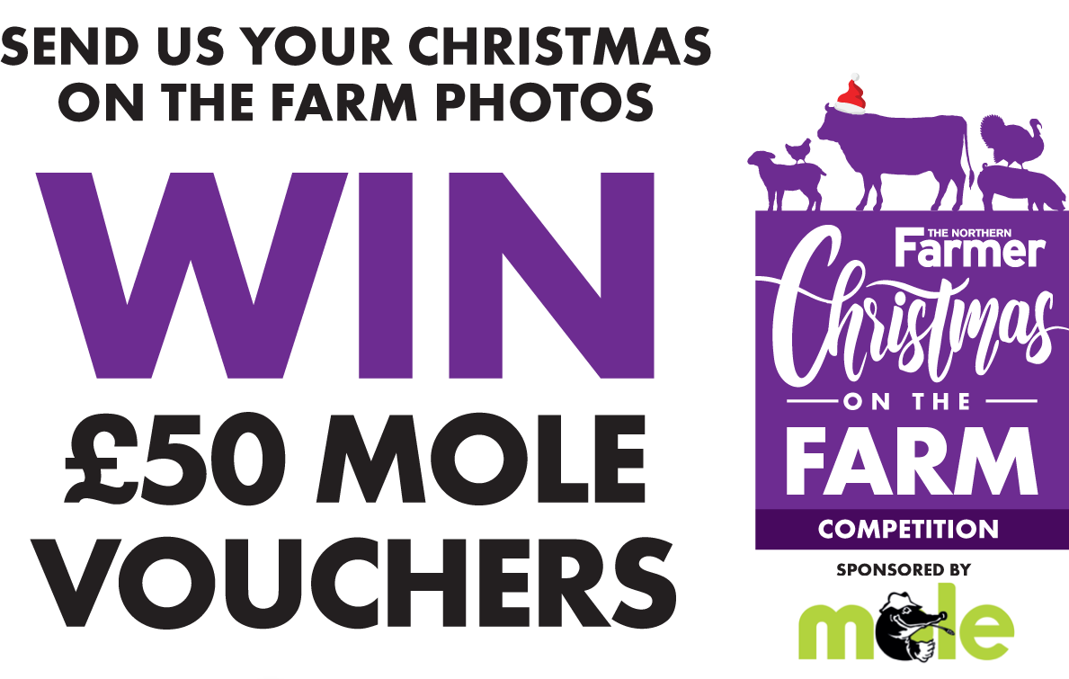 The Northern Farmer: Christmas on the Farm competition - win £50 Mole Country Store vouchers