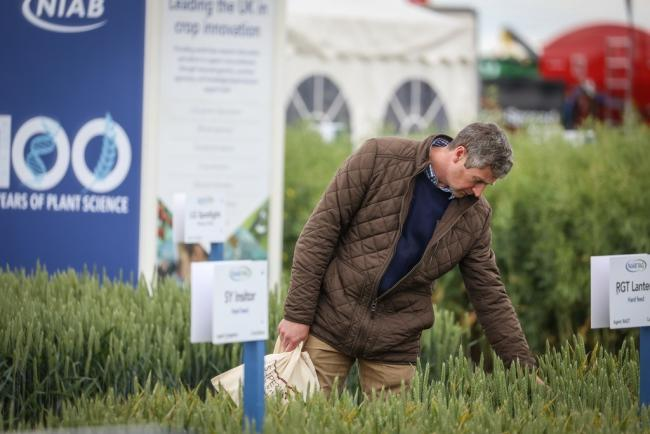 Cereals 2021 is due to take place in June on-site
