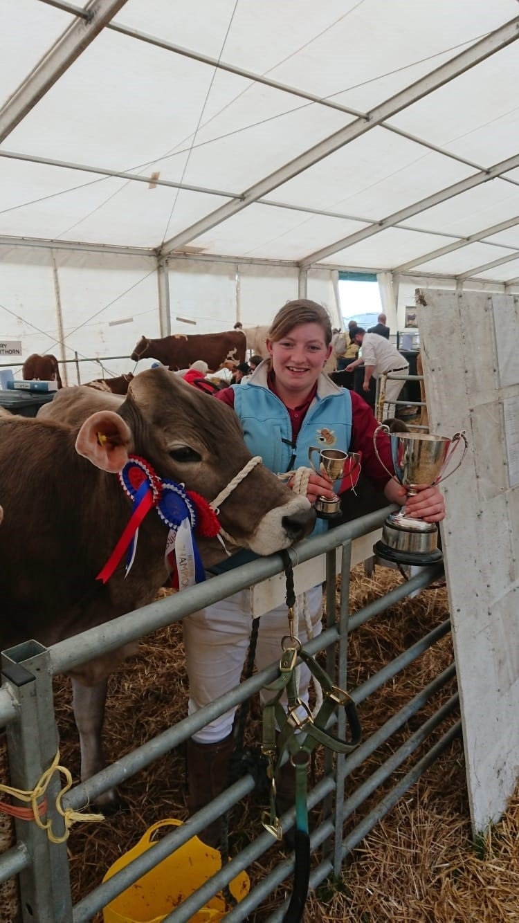 Emily Bradley with prize winning Brown Swiss at Nidderdale show 2019